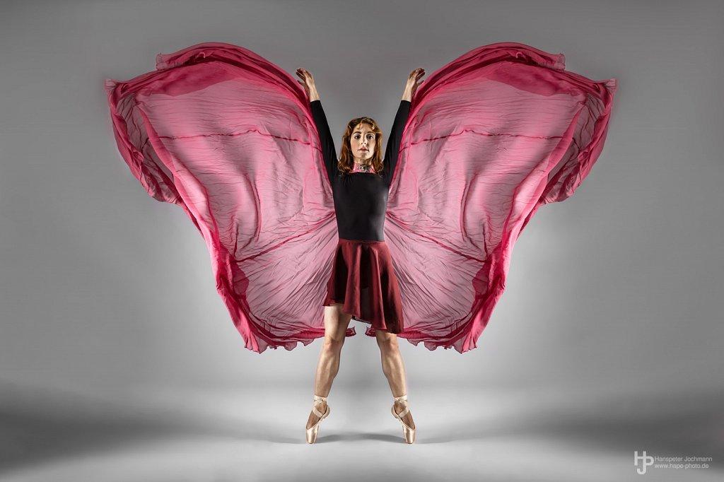 Ballett & Artistik